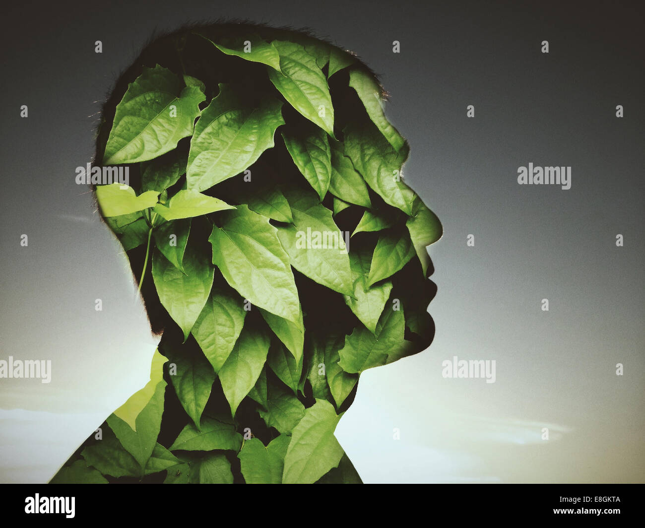 Leaves covering profile of man - Stock Image