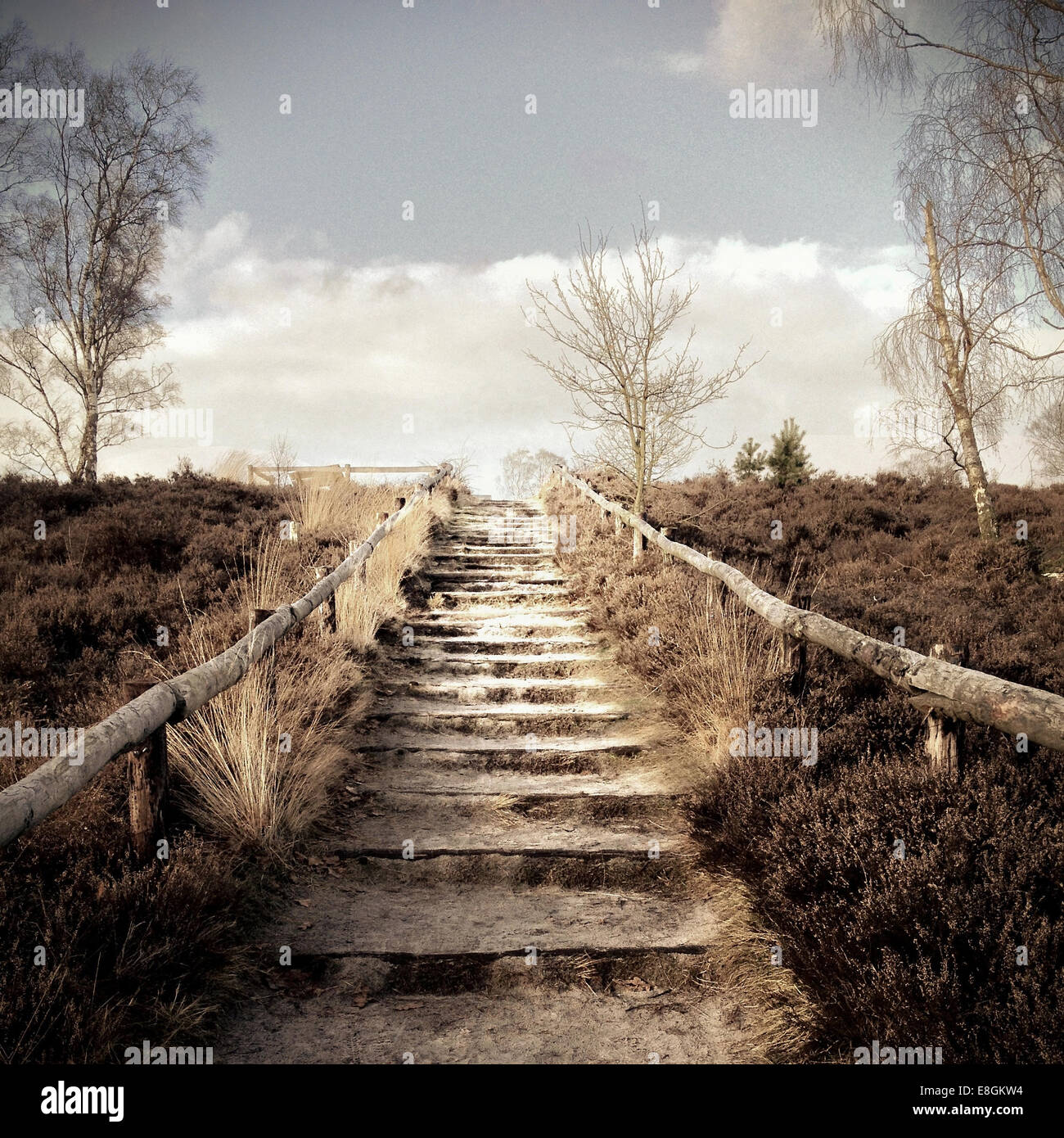Outdoor steps leading to top of hill - Stock Image