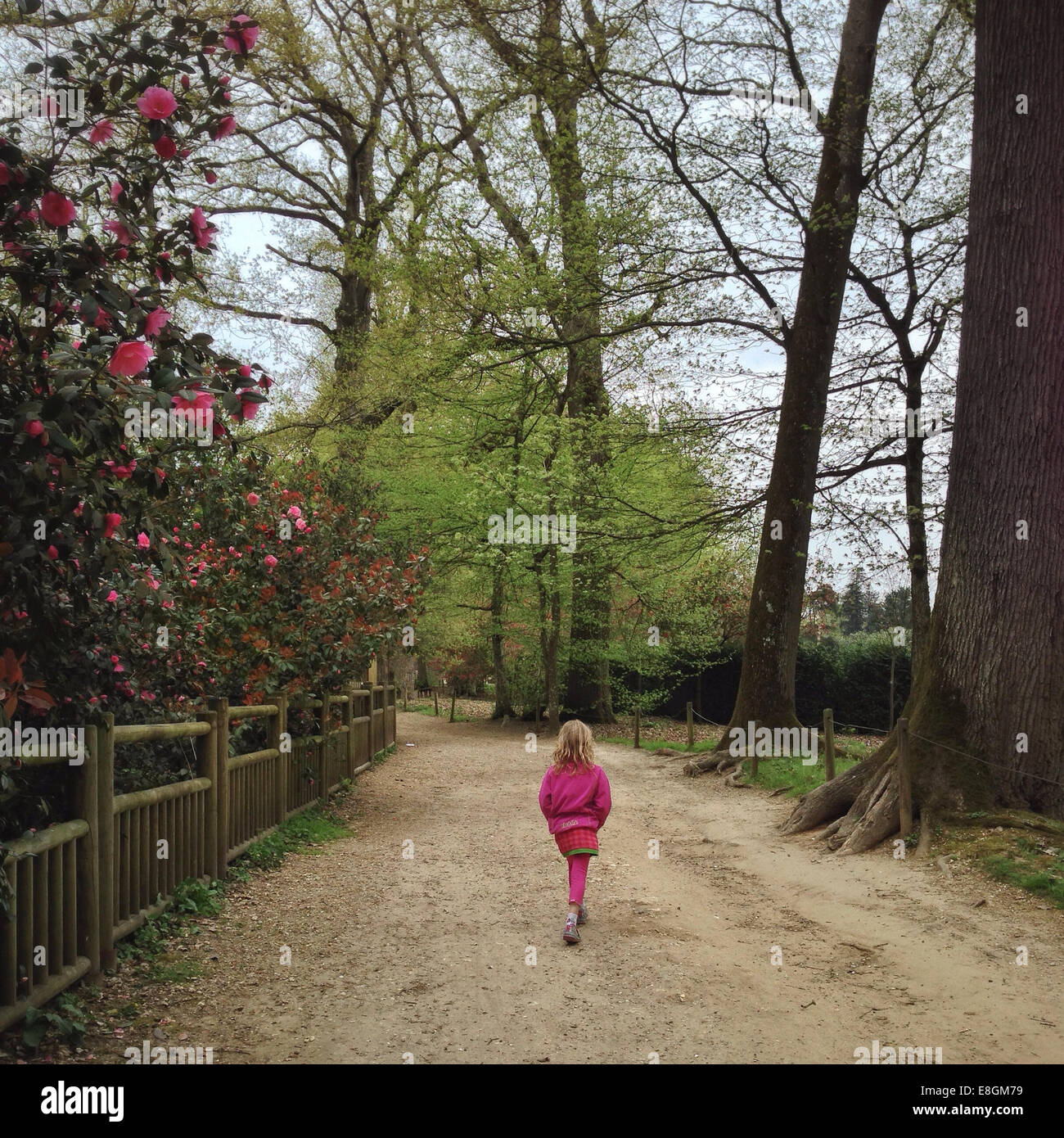 France, Ile-de-France, Yvelines, Rambouillet, Thoiry, Girl (12-13) in park - Stock Image