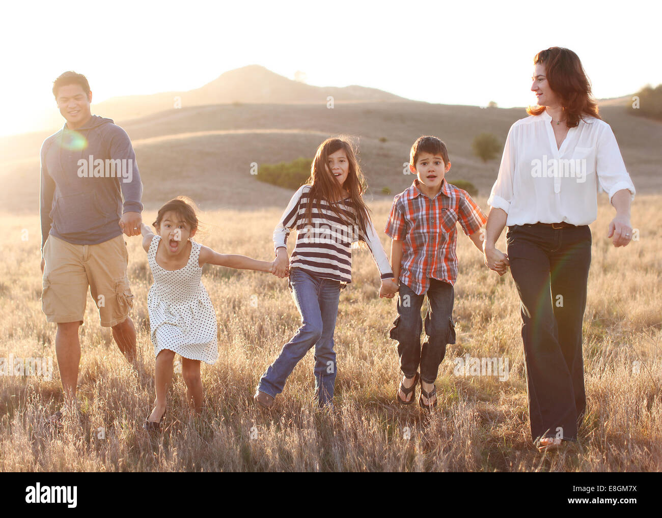 Family of five holding hands, walking in meadow - Stock Image