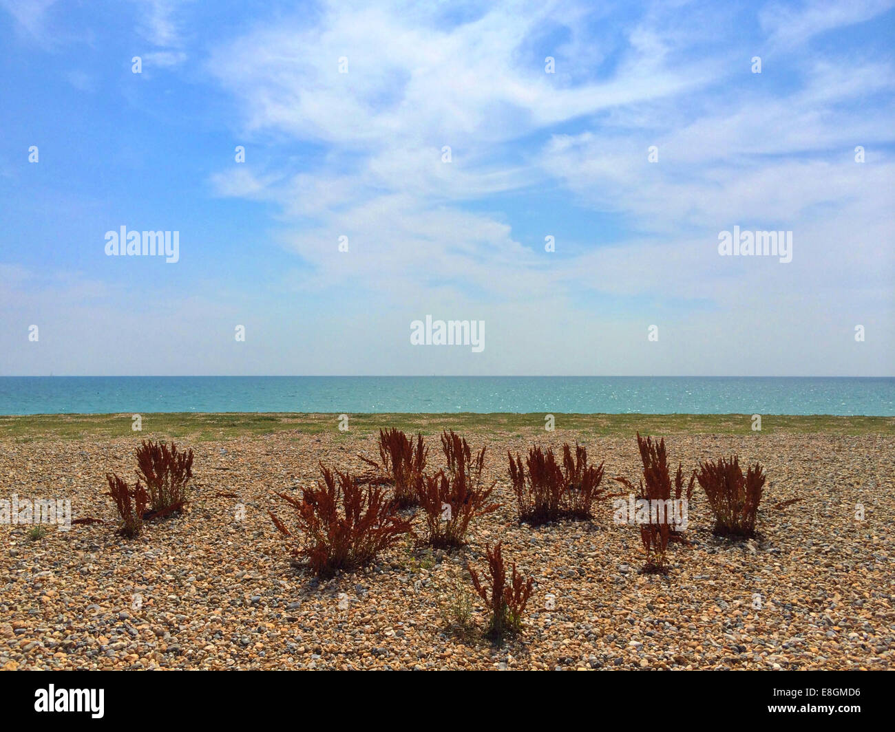 UK, England, West Sussex, Goring-by-Sea, Beach - Stock Image