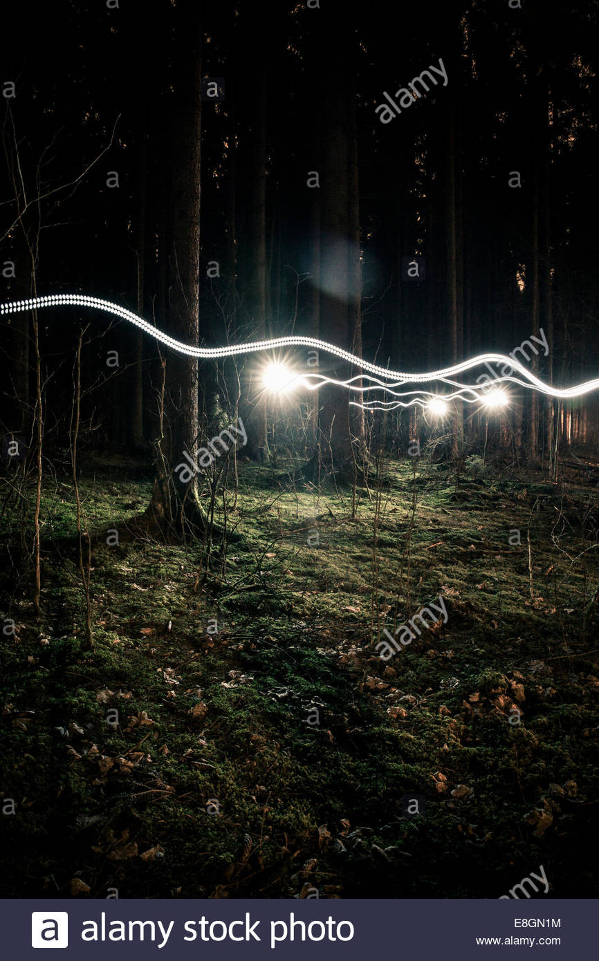 Light trails in forest - Stock Image