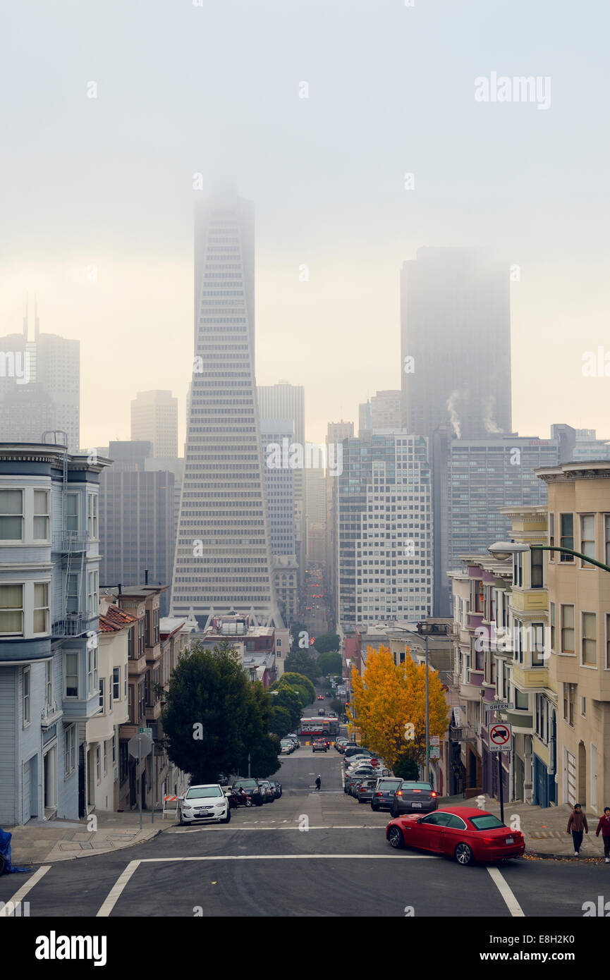 USA, California, San Francisco, Transamerica Pyramid and houses along Montgomery Street - Stock Image