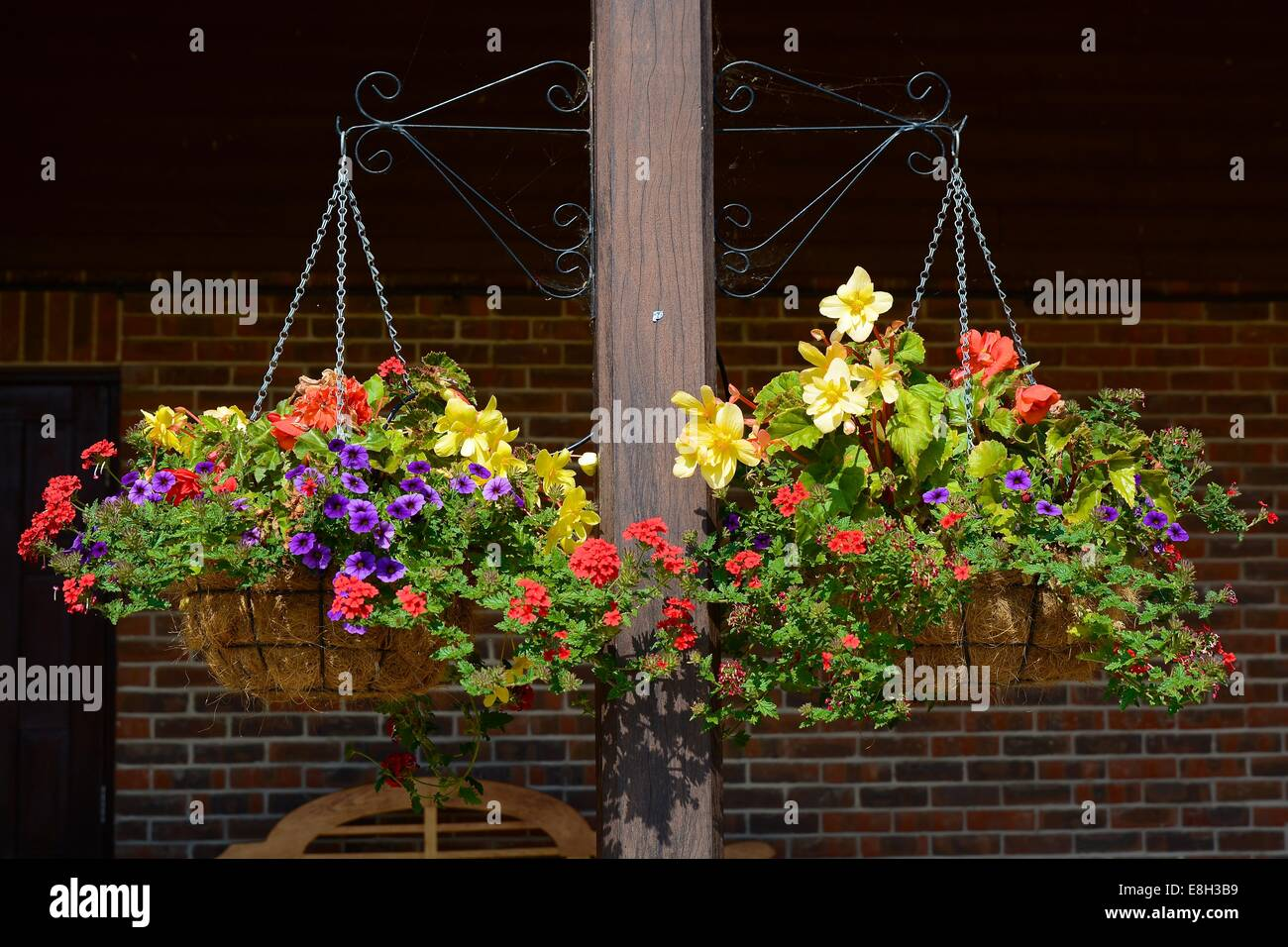 Two hanging baskets with colourful flowers - Stock Image