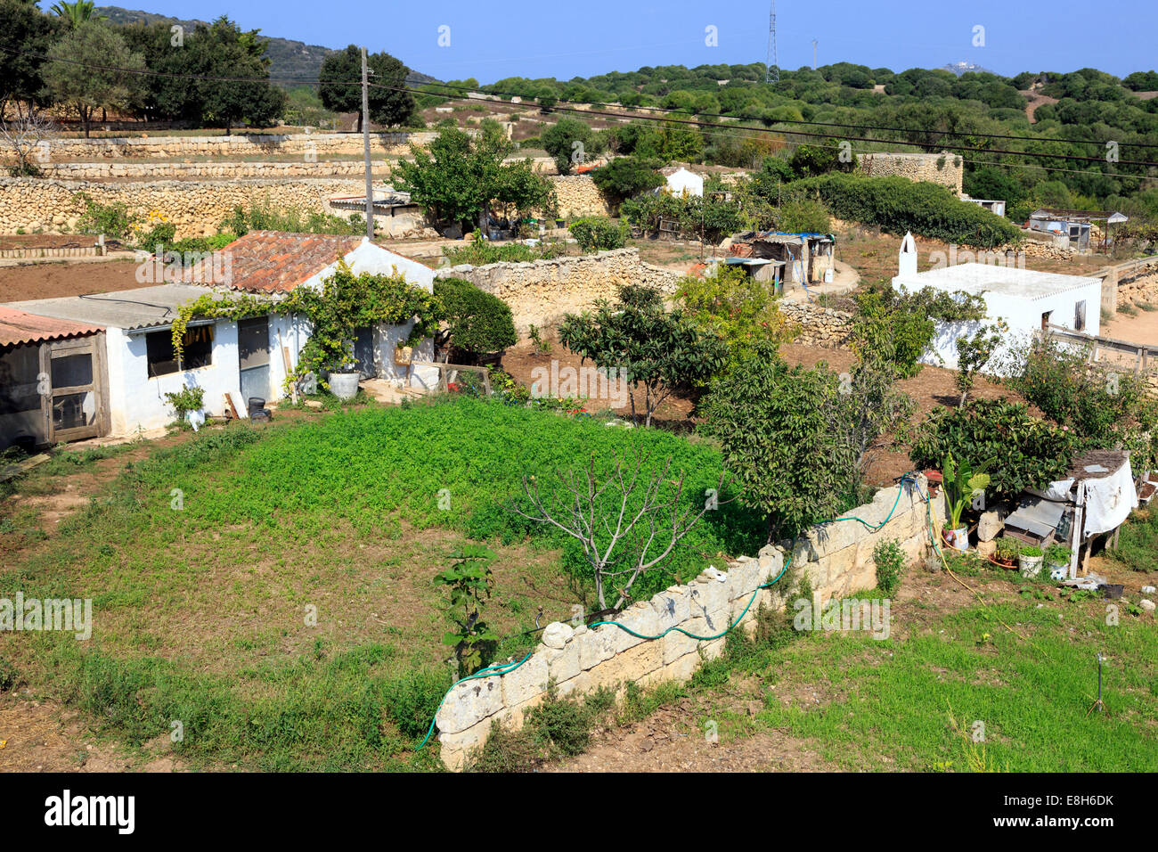 Traditional farming scene showing farmhouse and small holding fields, Menorca, Balearic Islands, Spain - Stock Image