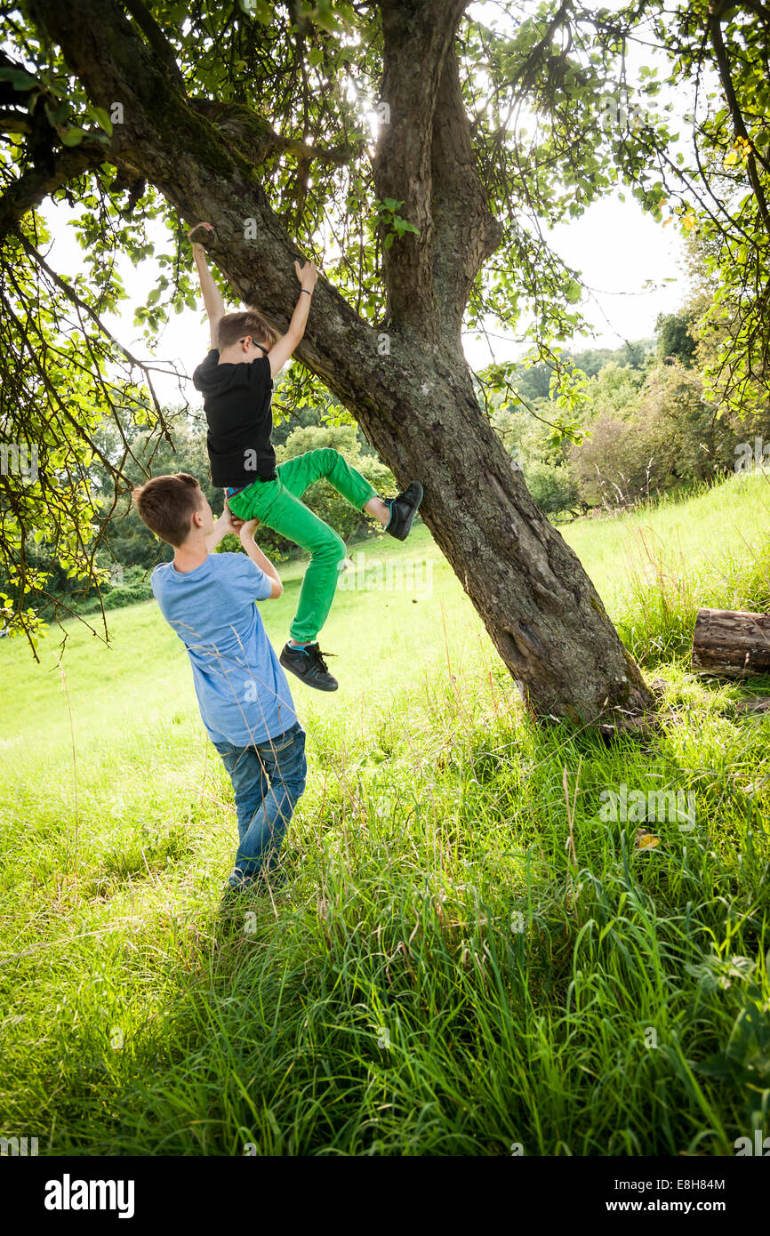 Boy helping his friend to climb down a tree - Stock Image