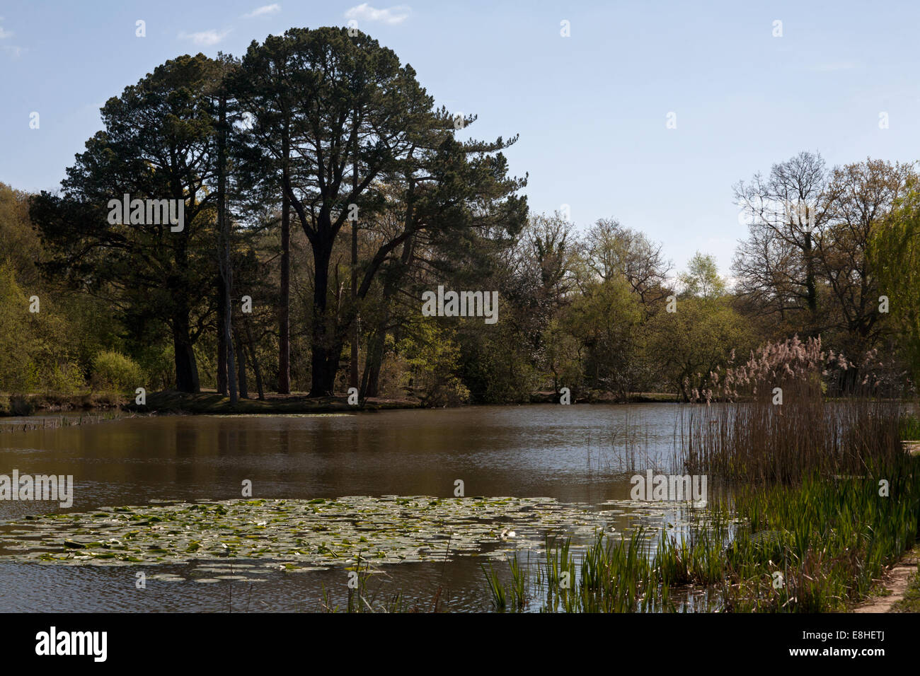 southampton common hampshire england - Stock Image
