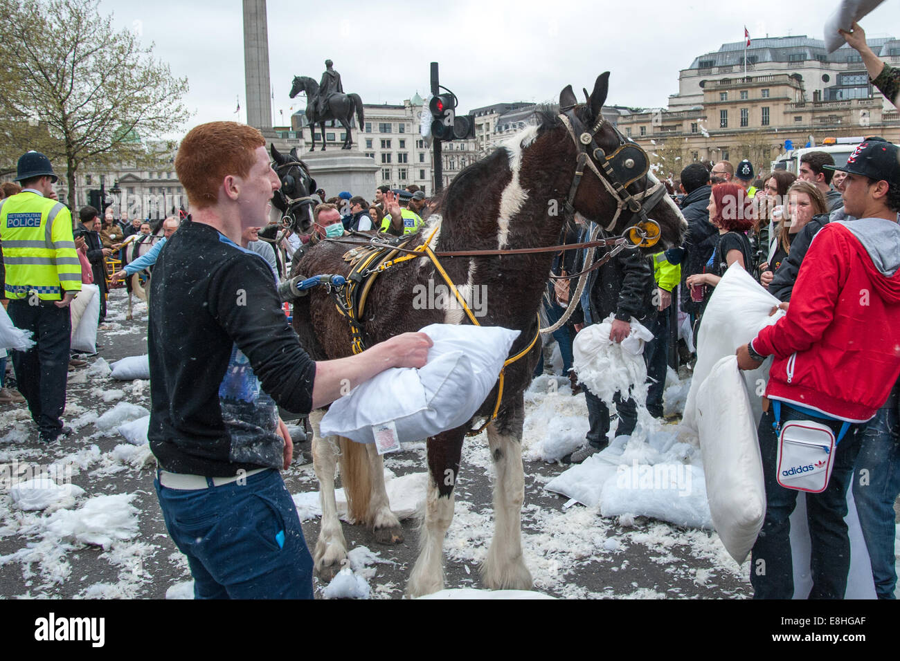 A horse gets caught up in the commotion as Londoners pillow fight in the street around Trafalgar Square during International - Stock Image