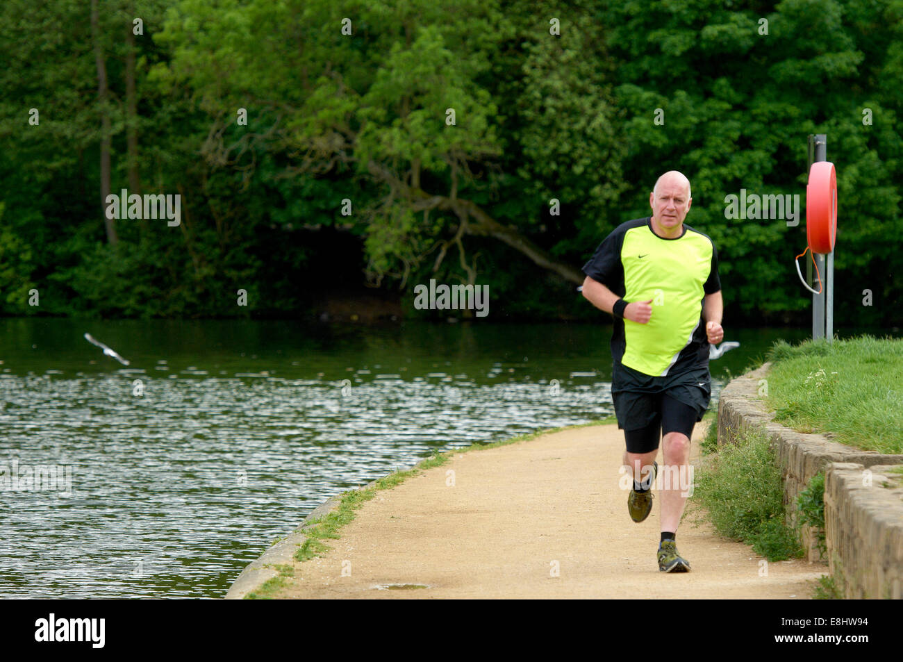 Man jogging on path around Waterloo Lake at Roundhay Park, Leeds, West Yorkshire, UK. Stock Photo