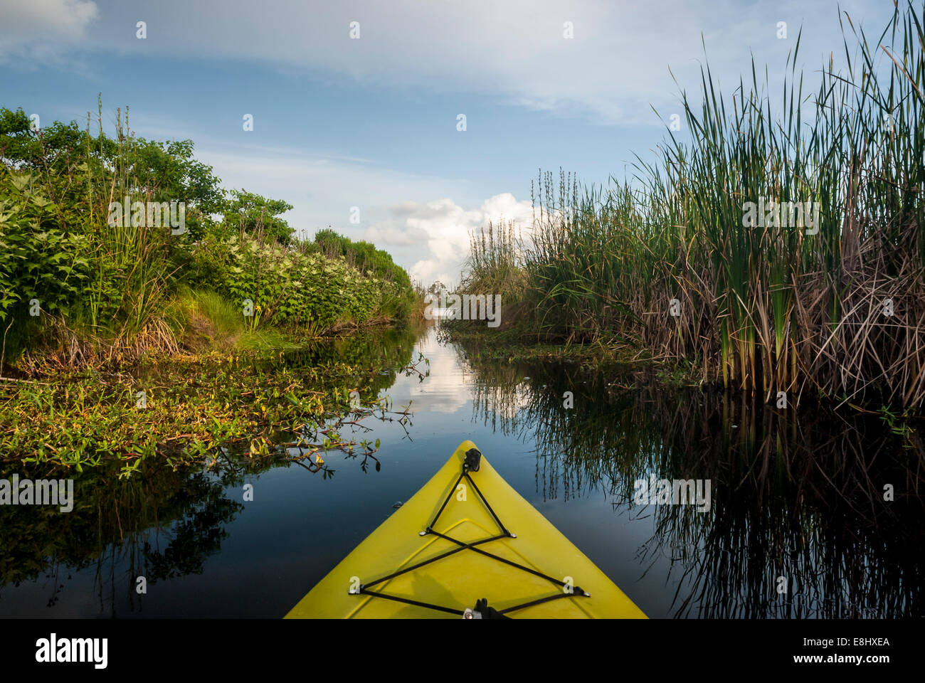 Kayaking in Gulf State Park in Alabama, along the Gulf Coast. Stock Photo