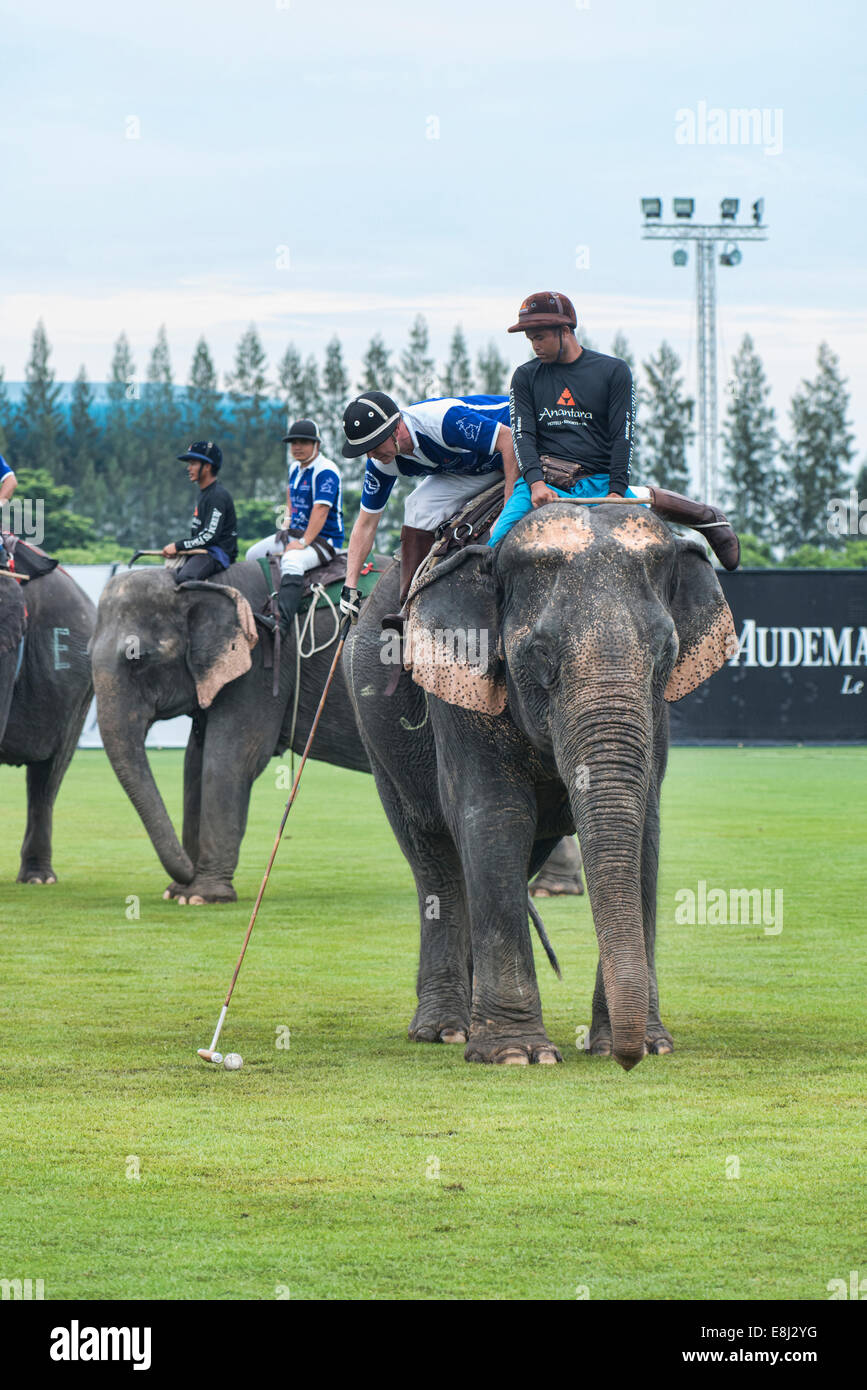 3bb488f76f3 Elephant polo match at the King s Cup Polo Tournament in Bangkok