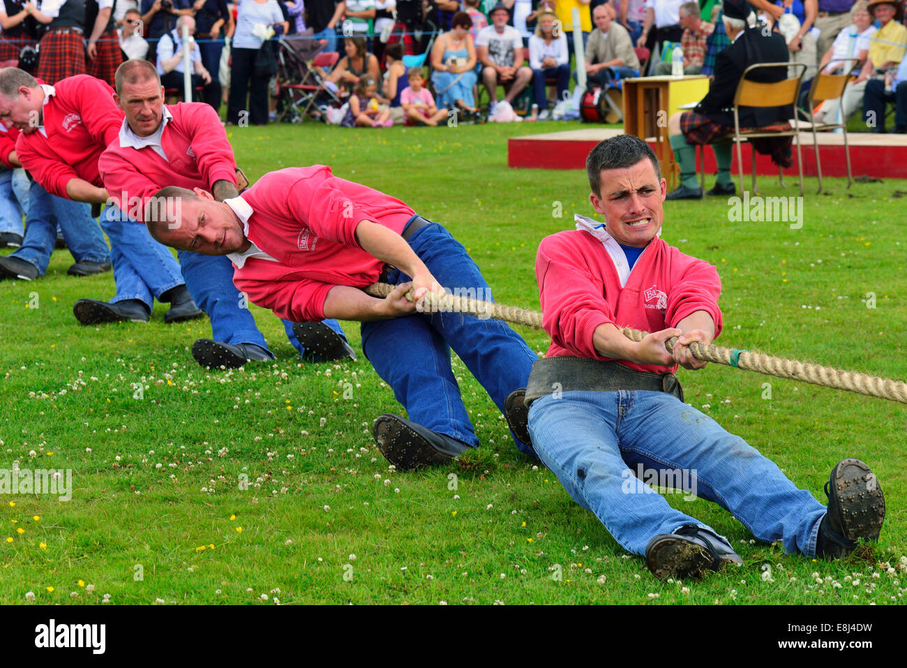 Tug-of-War, one of the disciplines at the Highland Games, Dufftown, Moray, Highlands, Scotland, United Kingdom - Stock Image