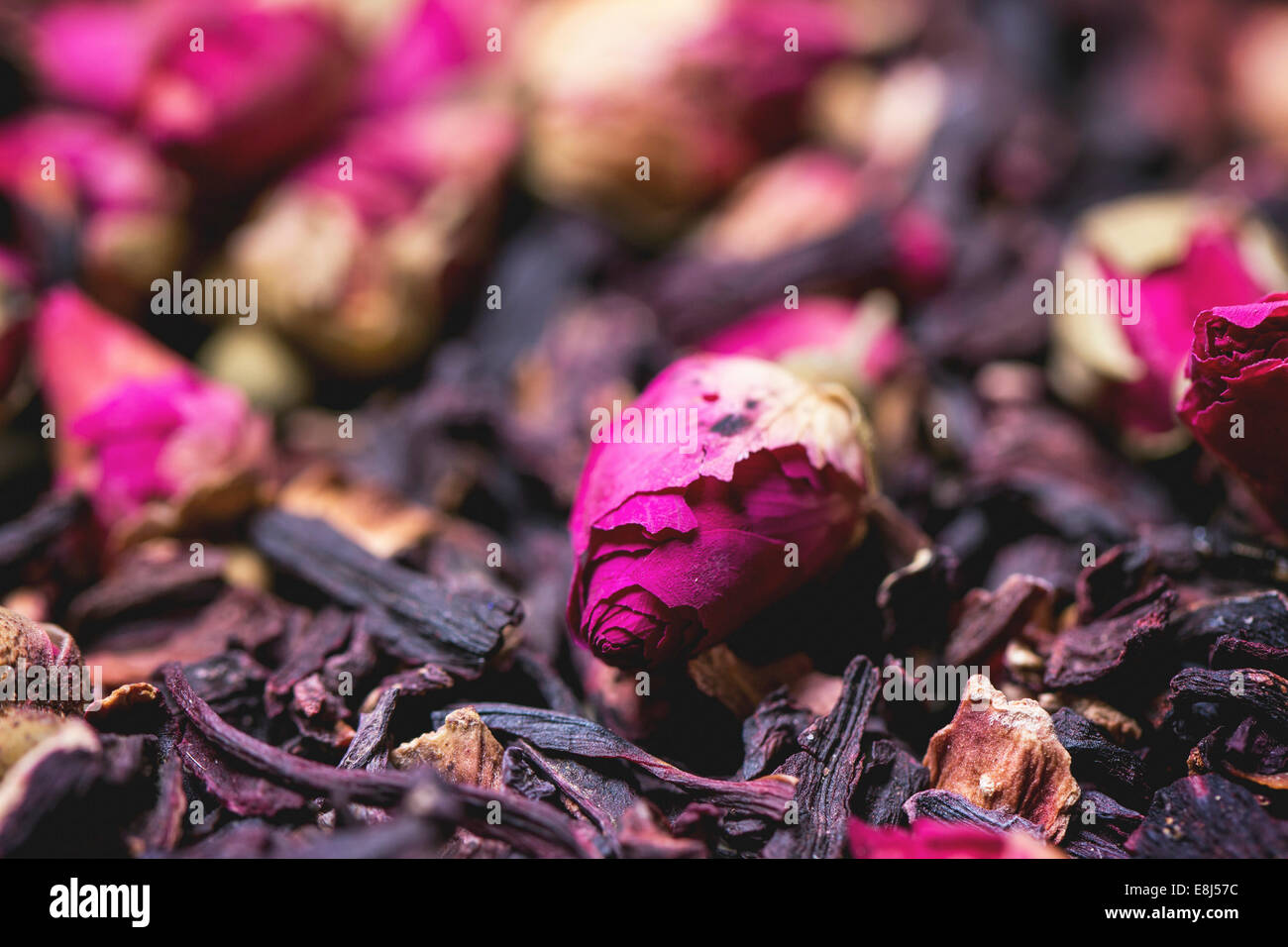 Pink hibiscus flower stock photos pink hibiscus flower stock heap of tea roses and dried hibiscus flower stock image izmirmasajfo Images
