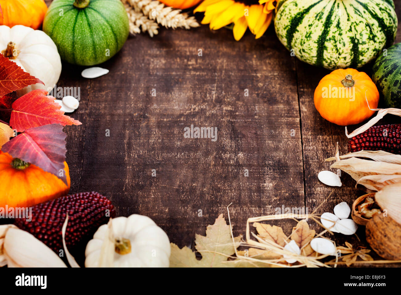 Autumn frame from pumpkins and corn on old wooden table. Thanksgiving day concept - Stock Image