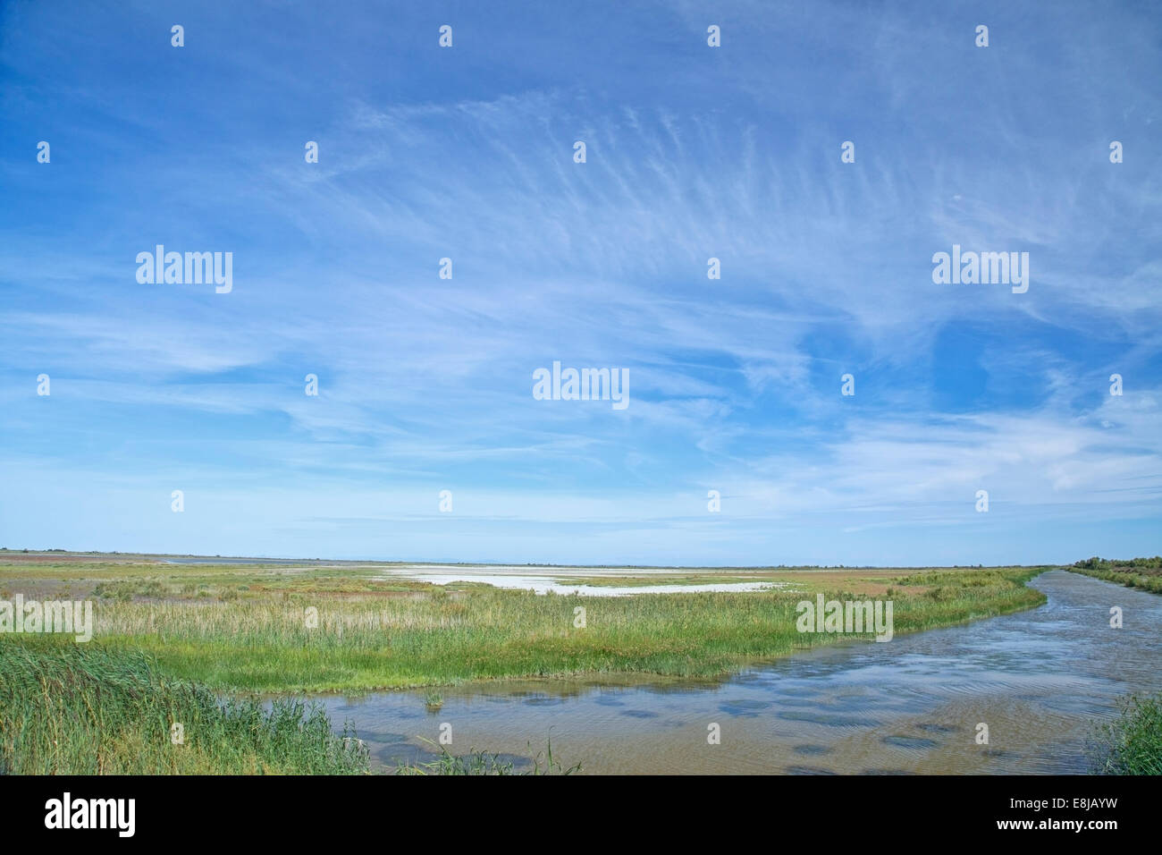 view over the Camargue natural park, France showing habitat. - Stock Image