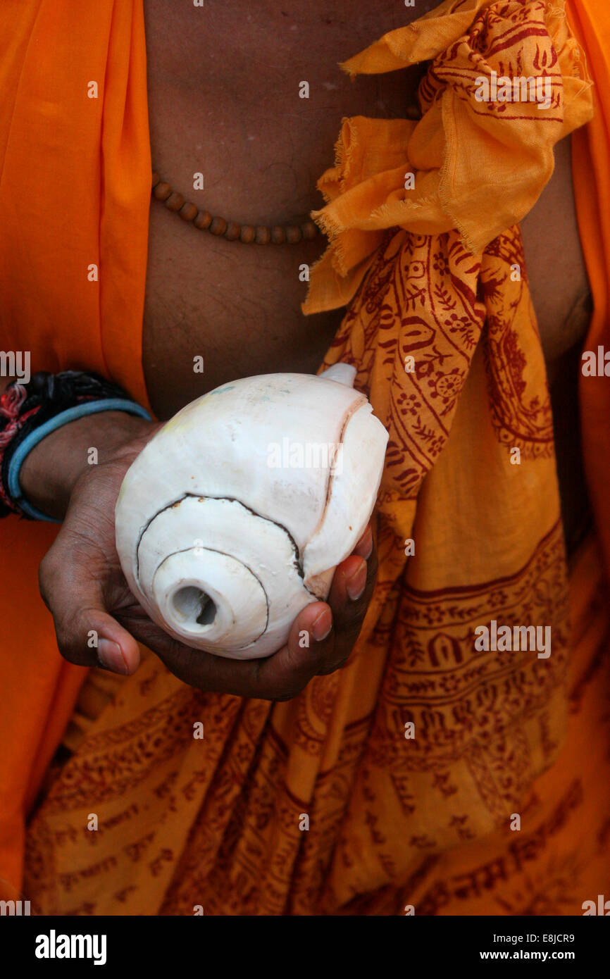 Conch played during Hindu ceremonies - Stock Image