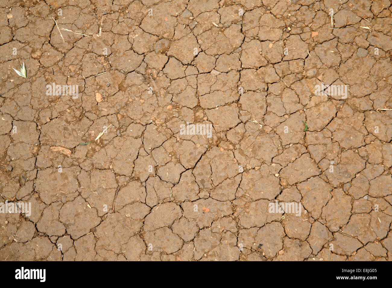 Earth craked by the dryness. - Stock Image