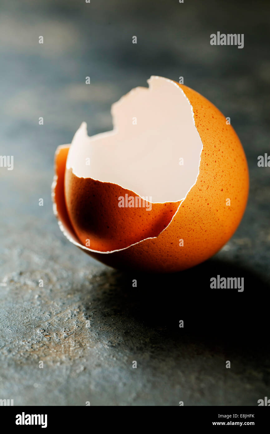Eggs shell on dark background - Stock Image