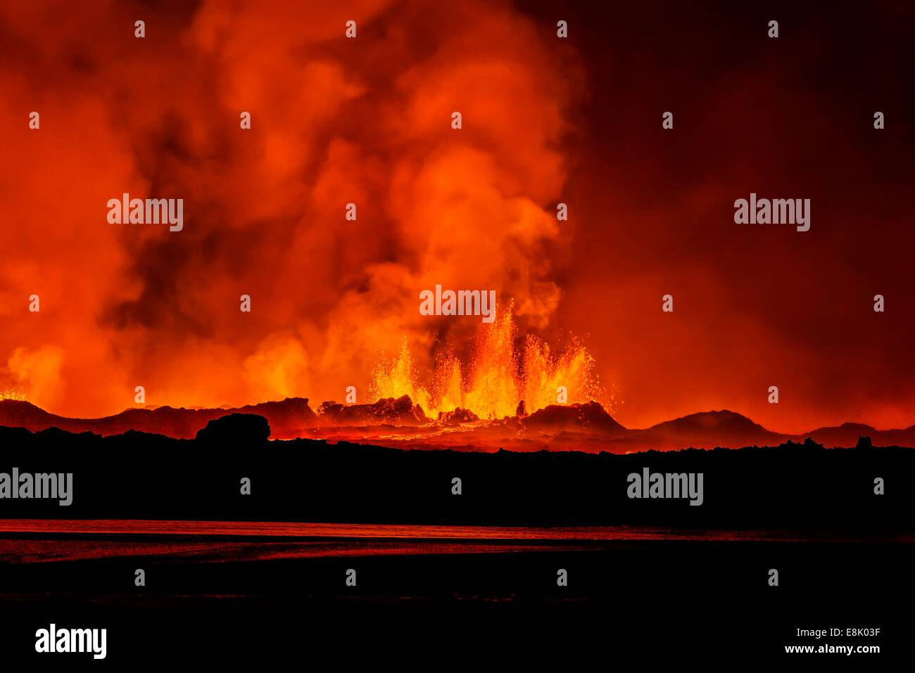 Lava fountains at night, eruption at the Holuhraun Fissure, near the Bardarbunga Volcano, Iceland - Stock Image