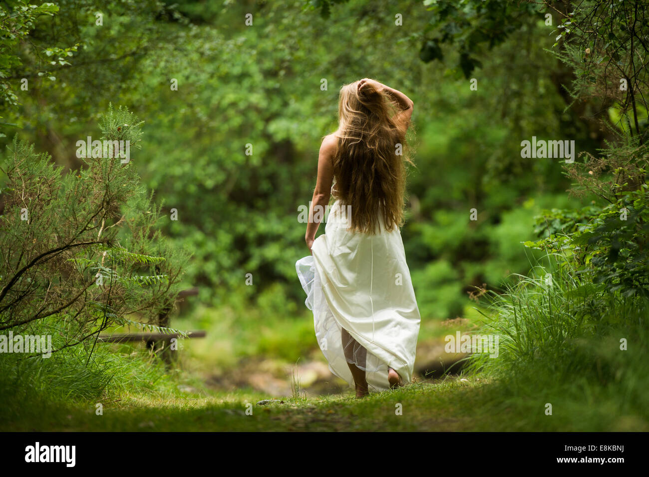 Rear view of a woman 'bride' with long blonde hair looking lost standing on a path in woodland wearing a - Stock Image