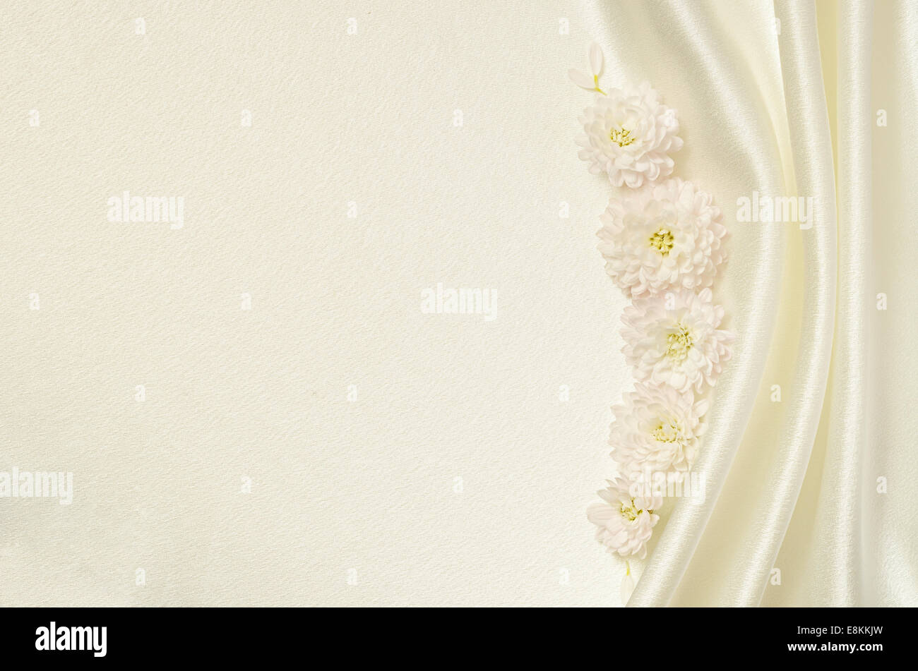 White silk background with flowers and folds - Stock Image