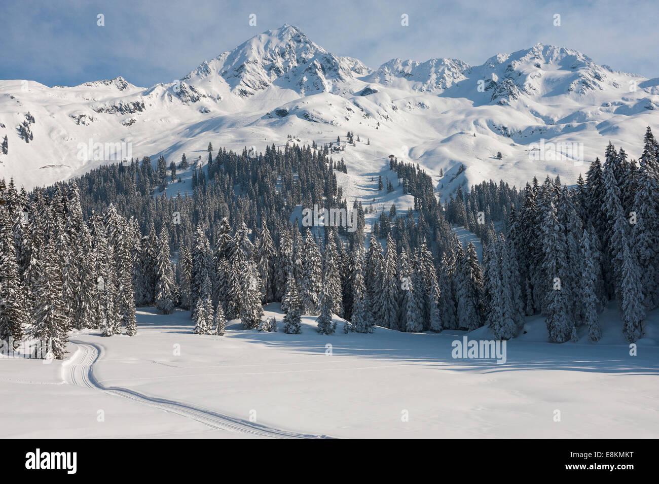 Snowy mountain landscape with fir forest, Kristbergbahn panoramic ski run, Silbertal, Montafon, Vorarlberg, Austria - Stock Image
