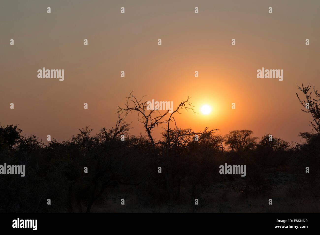 Sunset, Etosha National Park, Namibia - Stock Image