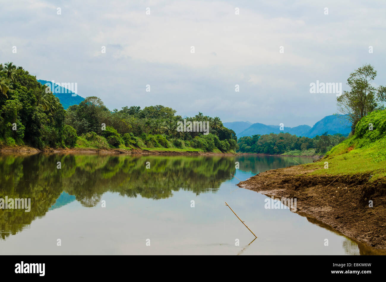 Periyar Lake, Thattekad, Kerala, India - Stock Image