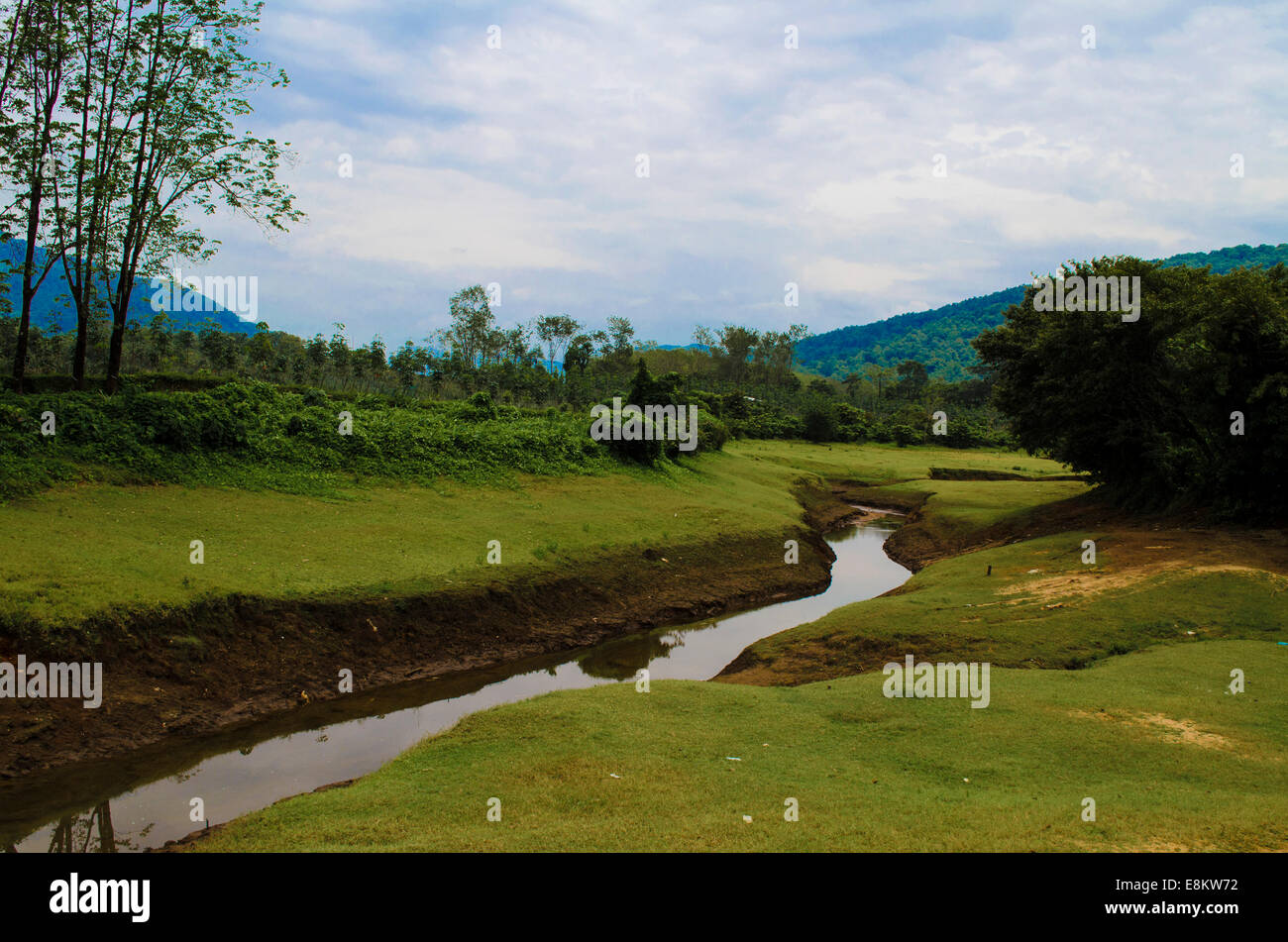 Periyar lake in Thattekad, Kerala, India - Stock Image