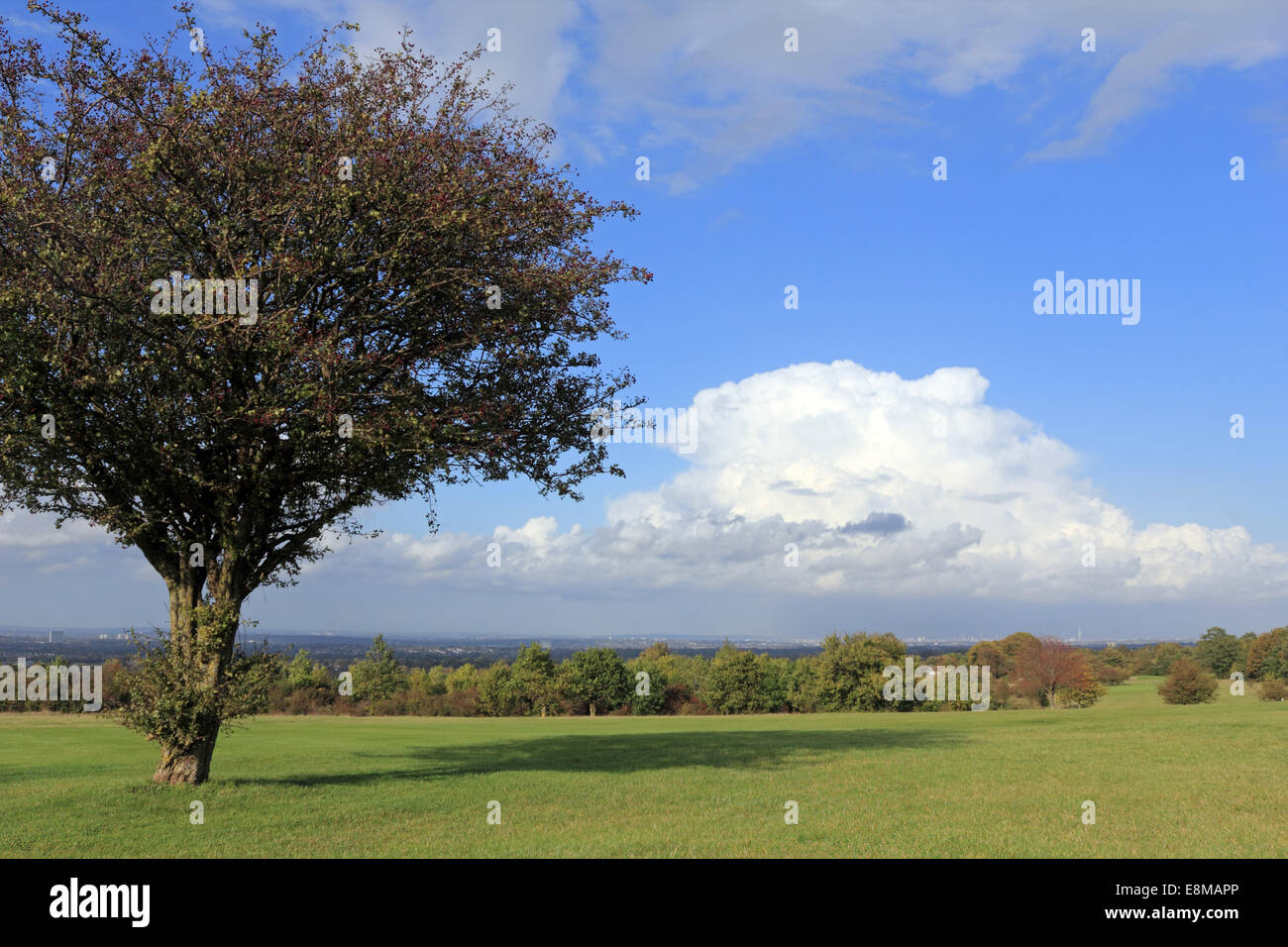 Epsom Downs, Surrey, UK. 10th October, 2014. On day of sunshine and showers, a huge storm cloud formed over London. - Stock Image