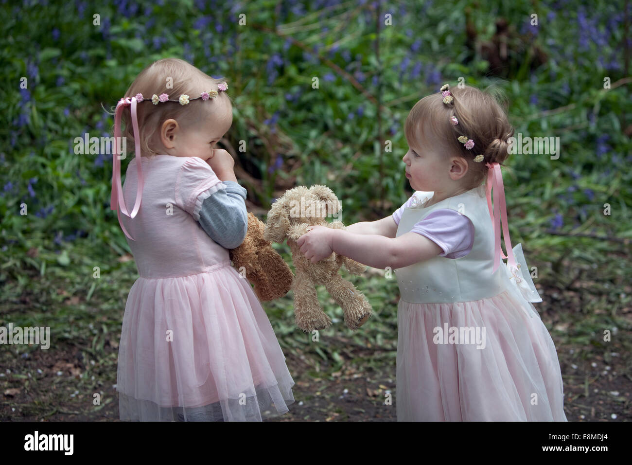 Two toddlers outdoors learning the concept of sharing toys. - Stock Image