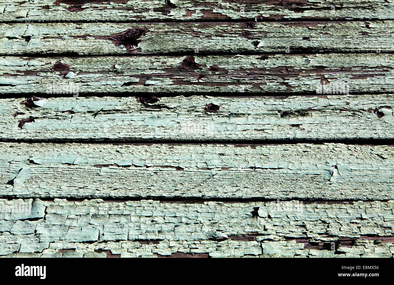 Paint peeling off a wood surface, - Stock Image