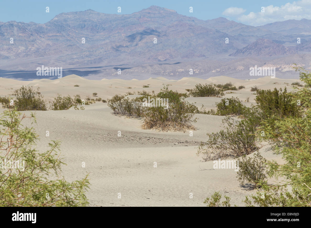 Mesquite Flat Sand Dunes in the Death Valley, mojave desert in California, USA - Stock Image