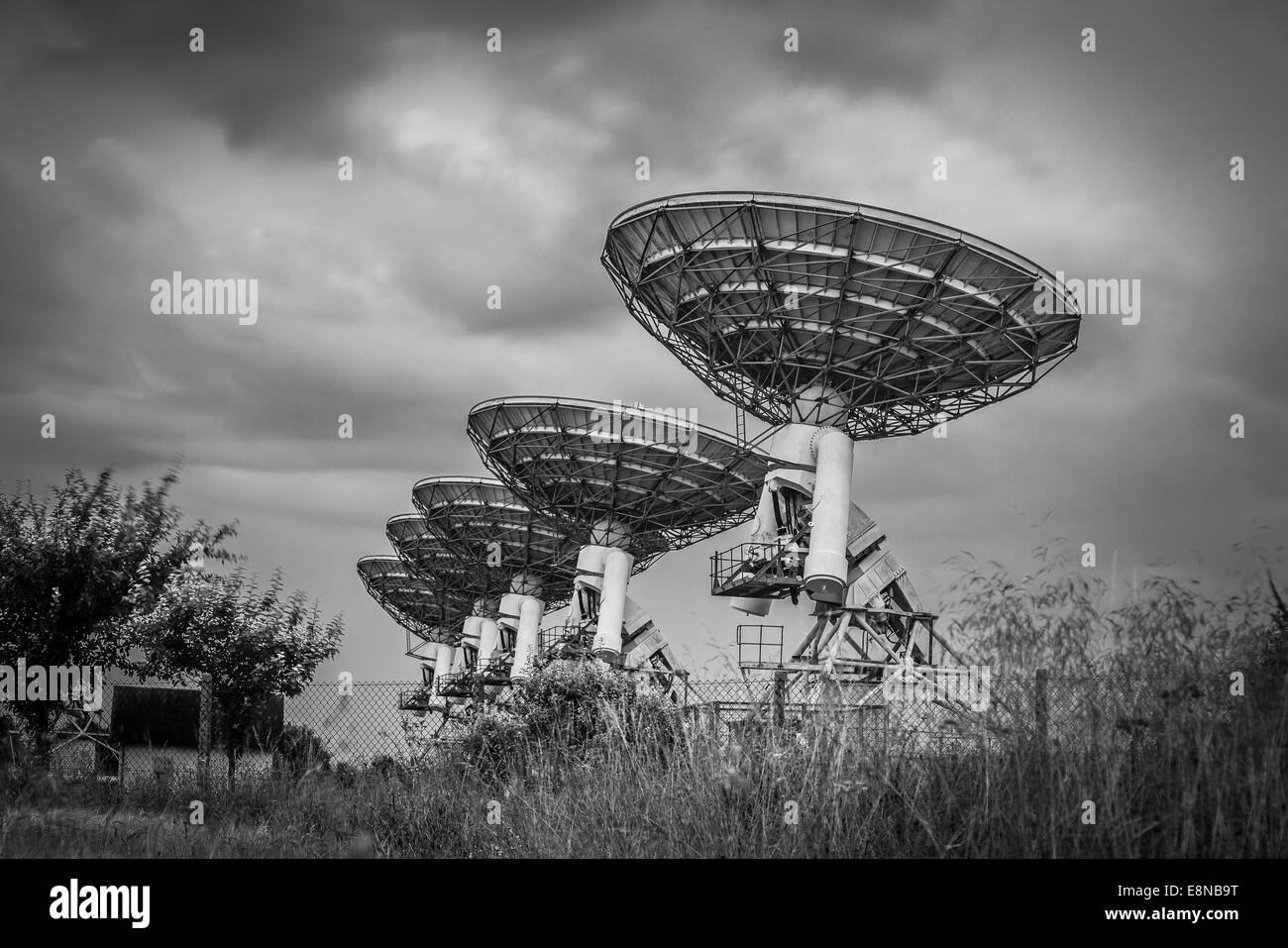 Radio telescope satellite dish array in a barley field before a storm in black and white - Stock Image