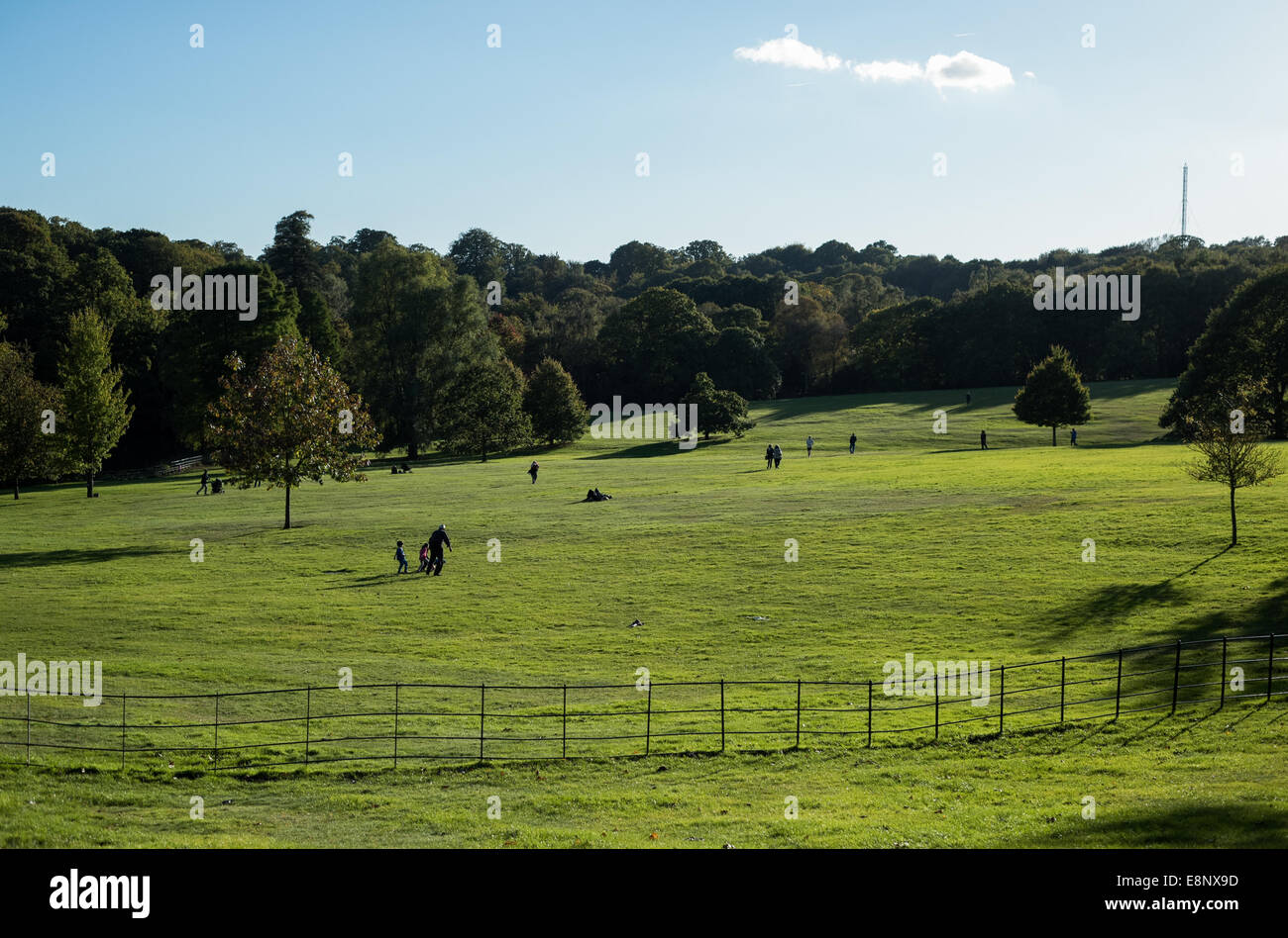 People enjoy the beautiful weather in Hampstead Heath in London in the late afternoon. - Stock Image