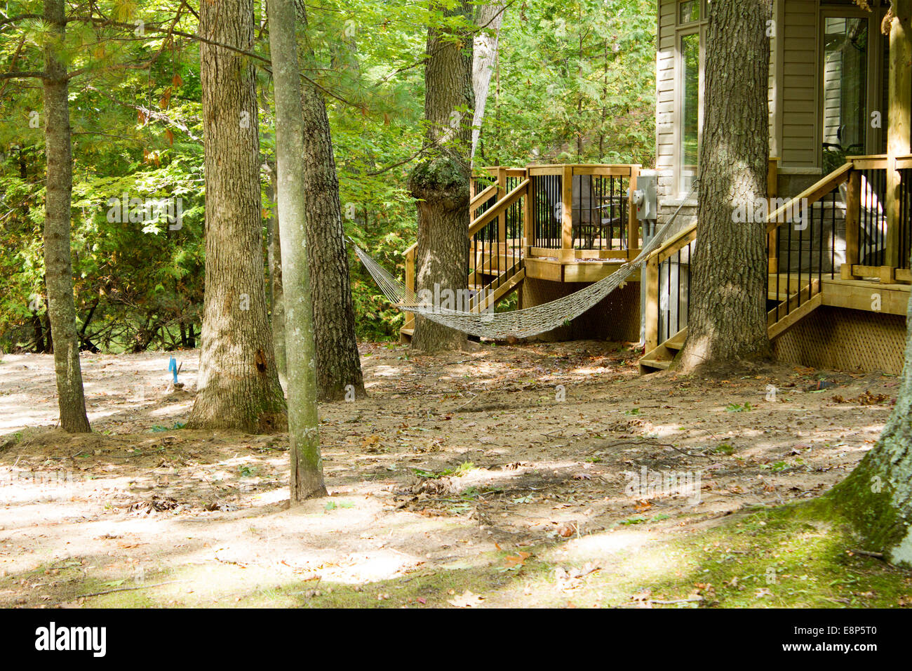 Awe Inspiring Hammock Hanging Between Two Trees In Front Of A Cottage In Home Interior And Landscaping Mentranervesignezvosmurscom