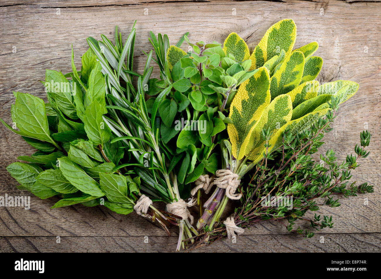 Freshly harvested herbs, bunch of fresh herbs over wooden background. - Stock Image