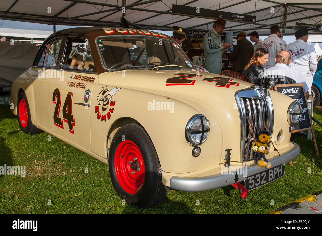 Classic vintage 1956 MG Magnette ZA at the Goodwood Revival 2014, West Sussex, UK - Stock Image