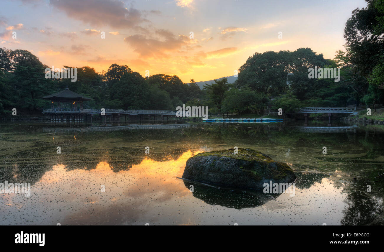 Summer dawn at Sagi Ike Pond in Nara, Japan - Stock Image