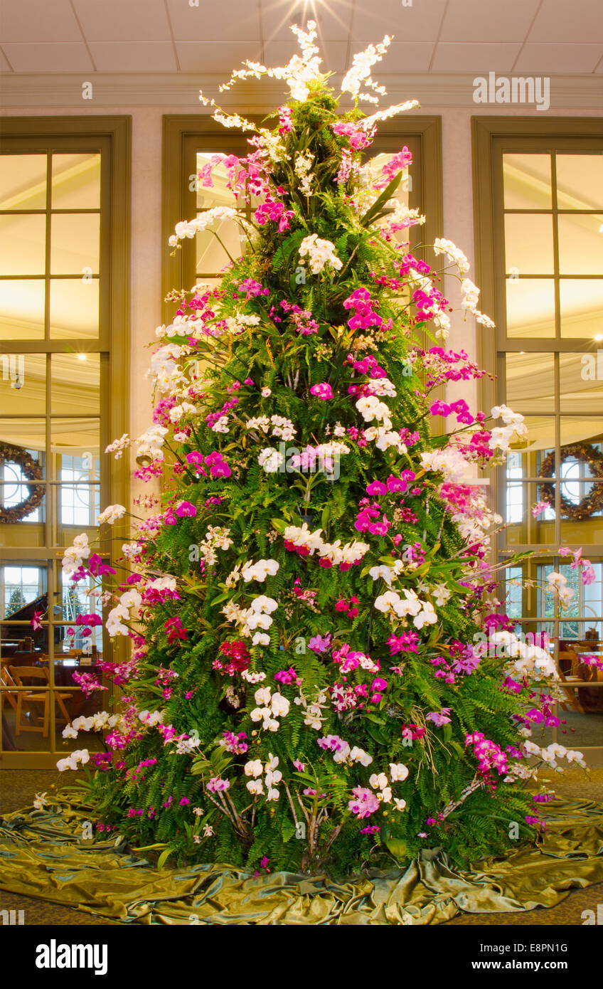 Orchid Christmas Tree.This Spectacular Christmas Tree Is Made Of Tropical Plants