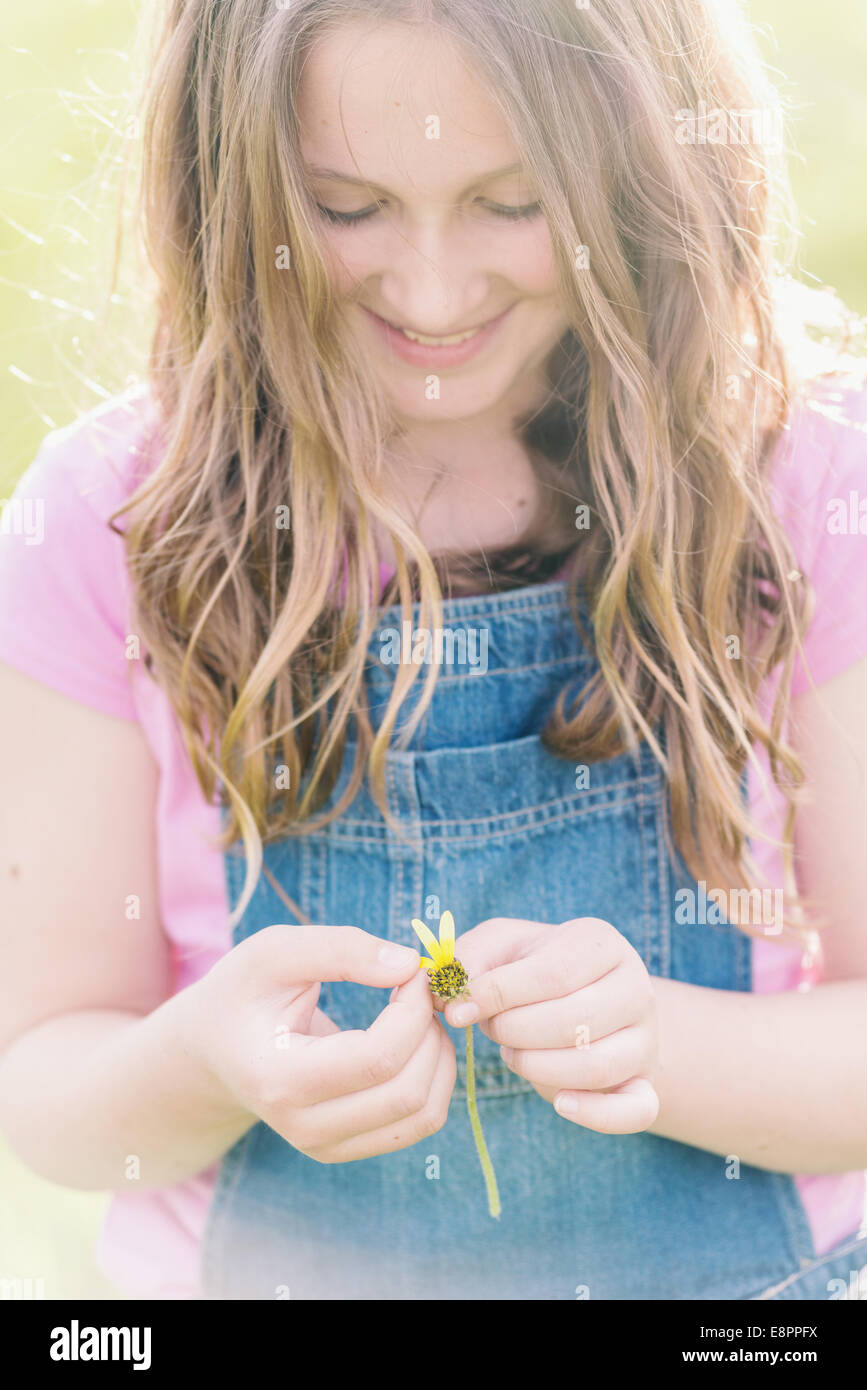 tween girl with daisy, making a wish - Stock Image