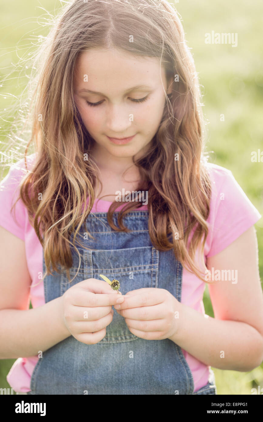 girl with the last petal of her wishing daisy - Stock Image