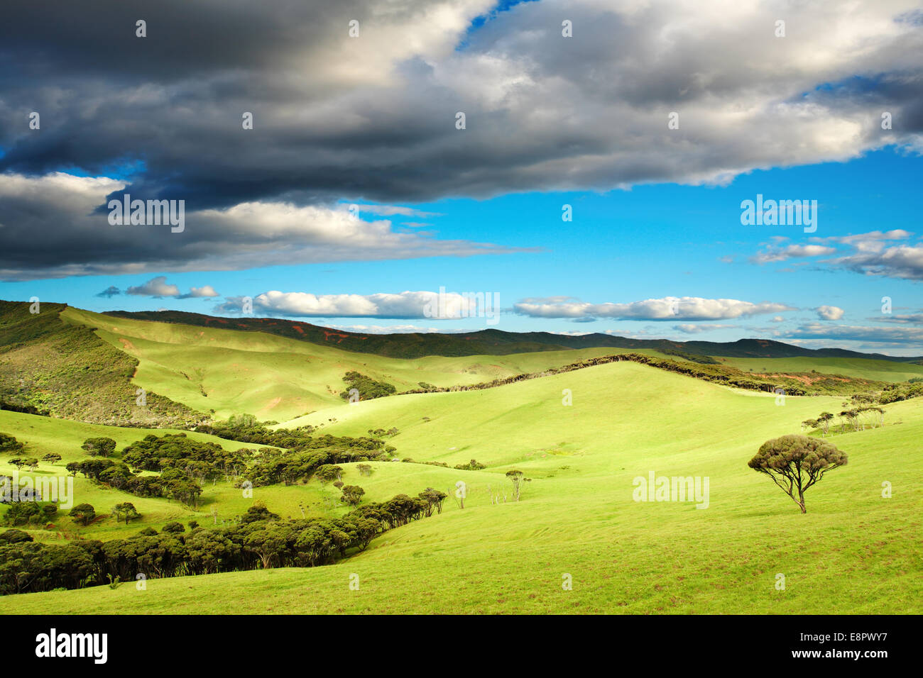 Beautiful landscape at sunset, New Zealand Stock Photo