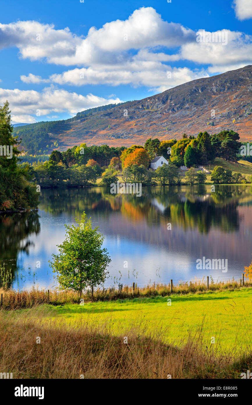 Loch Alvie in the Cairngorms National Park in Scotland - Stock Image