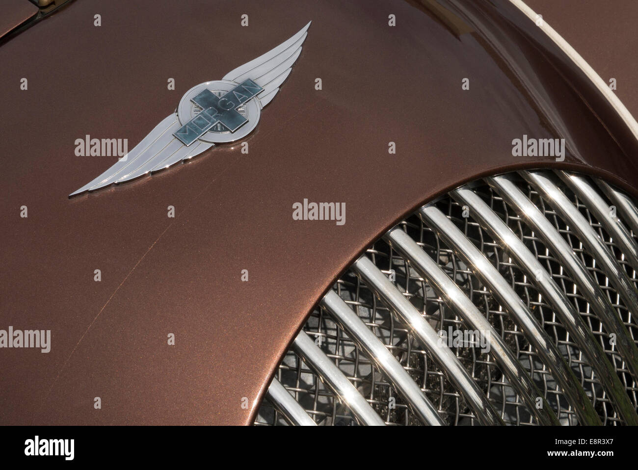 2014 Morgan Plus 8 radiator badge - Stock Image
