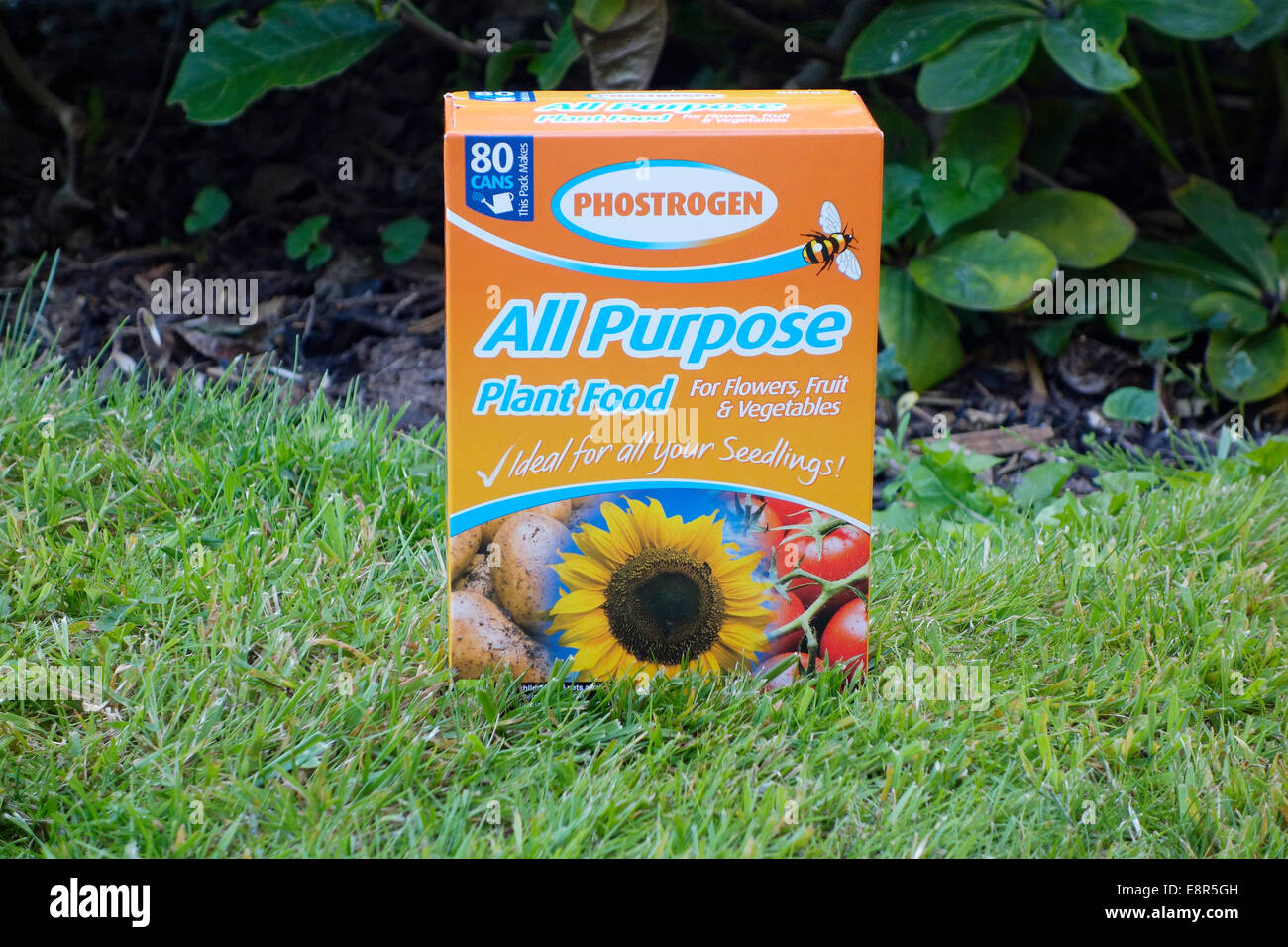 Phostrogen All Purpose Soluble Plant Food - Stock Image