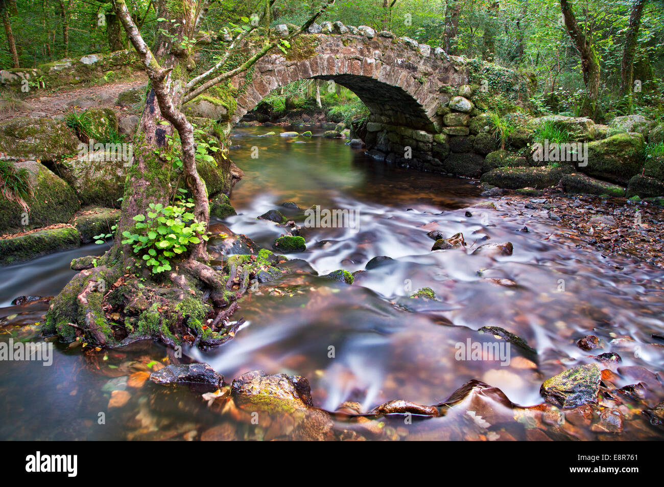 The river Bovey flowing under old stone bridge in Devon, England - Stock Image