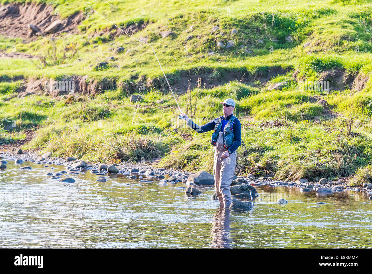 Fly fisherman angler in the River Wharfe at Bolton Abbey, North Yorkshire - Stock Image