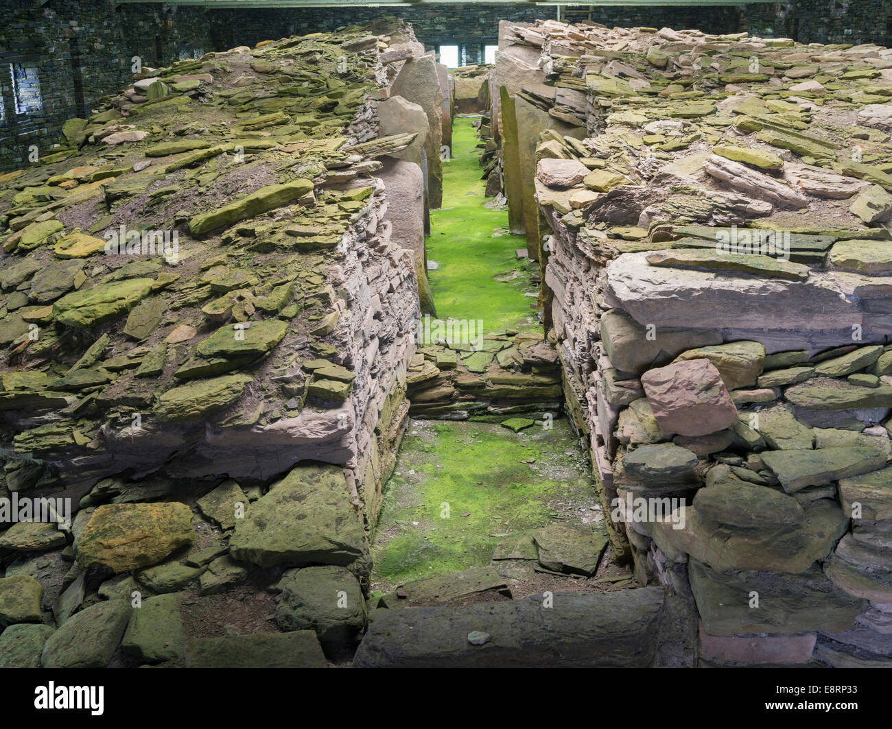 Midhowe Chambered Cairn, a Neolithic chambered cairn of the Orkney-Cromarty type on Rousay island, Orkney islands, - Stock Image