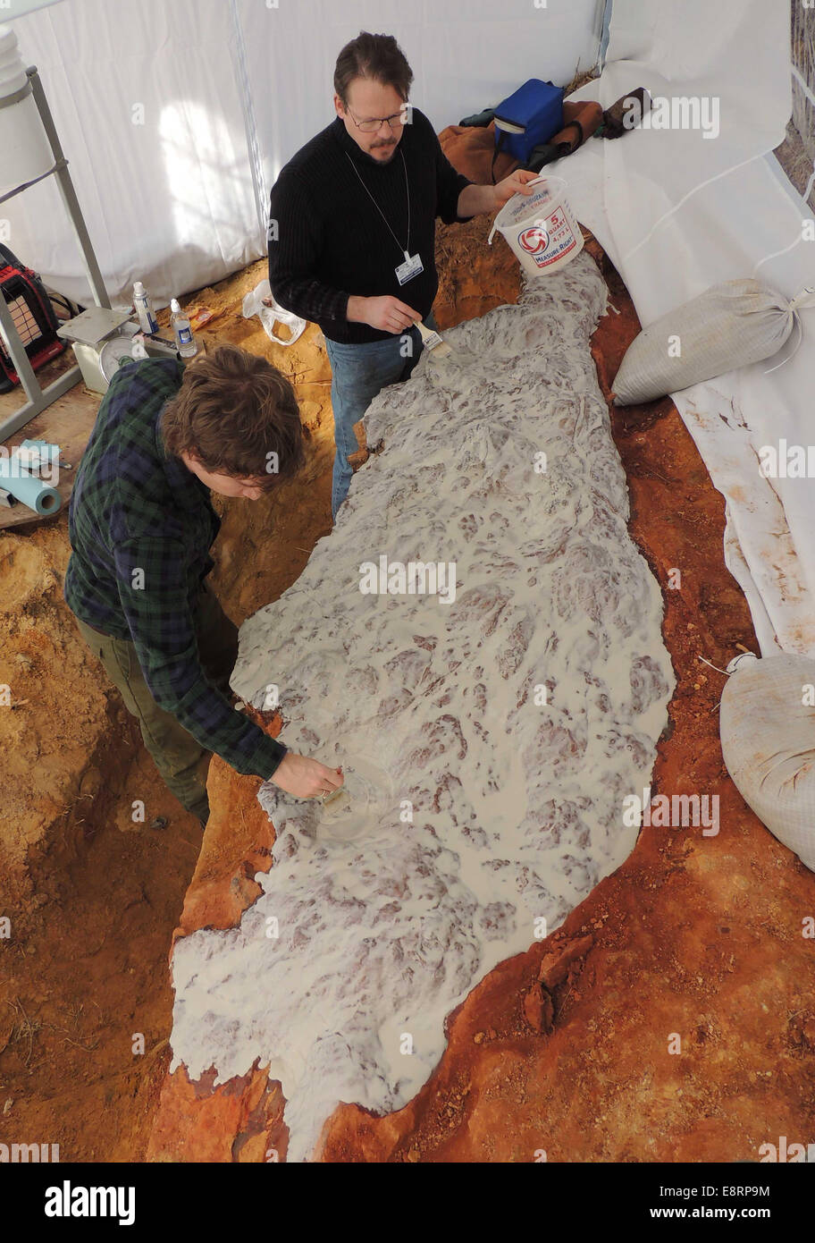 Michael Godfrey (left) and Perry Carsley (center) are coating the dinosaur footprints with a silicone rubber molding - Stock Image